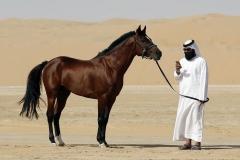 قطر اطلاعات شخصی بیش از یک میلیون کاربر را در معرض خطر قرار داد