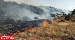 عاملان آتشسوزی کوه خائیز دستگیر شدند/ ۴۰ هکتار جنگل و مرتع در آتش سوخت