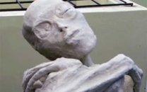 مومیایی عجیب سهانگشتی پرو، انسان نیست