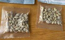 فروش بذرهای خارجی در آمازون ممنوع شد