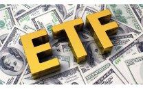 معاون وزیر اقتصاد خبر داد: ارزش واحدهای ETF دو برابر شد