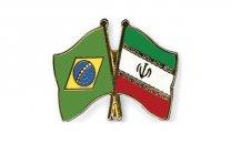 گسترش همکاریهای فناورانهی ایران و برزیل در حوزهی علوم شناختی