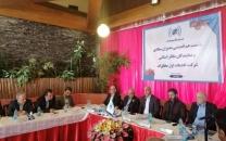 مجید صدری: حذف پیمانکاران محلی در دستور کار مخابرات نیست