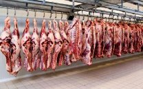 شرایط خرید اینترنتی گوشت تنظیم بازاری چیست؟