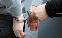 دستگیری عامل انتشار فیلم حیوان آزاری در فضای مجازی
