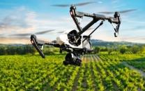 دانشبنیانها برای رفع نیازهای فناورانه کشاورزی و صنایع دعوت شدند