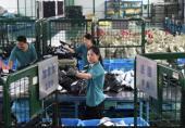 پلتفرمهای فروش آنلاین چین زیر ذره بین قانونگذاران!