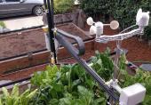 ویدئو/ رباتی که باغبانی میکند