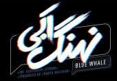 پست ساعد سهیلی درباره سانسور گسترده سریال «نهنگ آبی»
