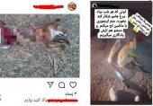 بازداشت یک مرد بخاطر انتشار عکس های وحشتناک