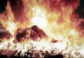 خانم دکتر بعد از آزار شیطانی زنده زنده سوزانده شد